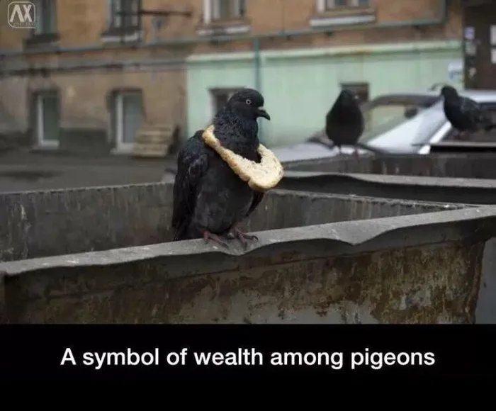 Obrázek Let-them-eat-bread