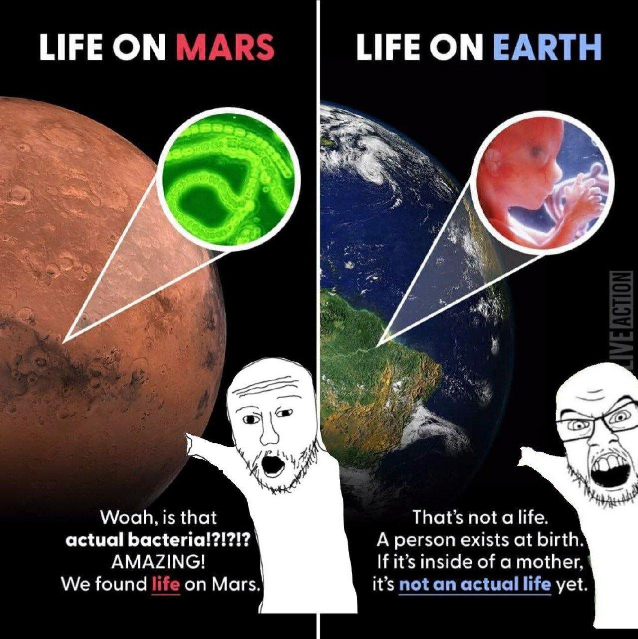 Obrázek Lifescience