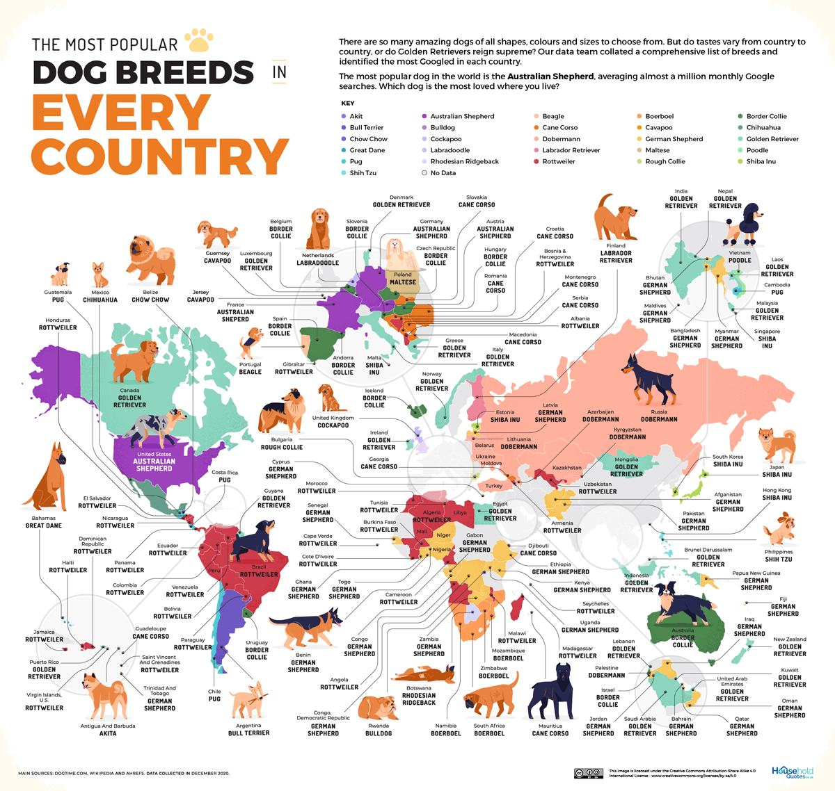 Obrázek Most popular dog breeds in every country