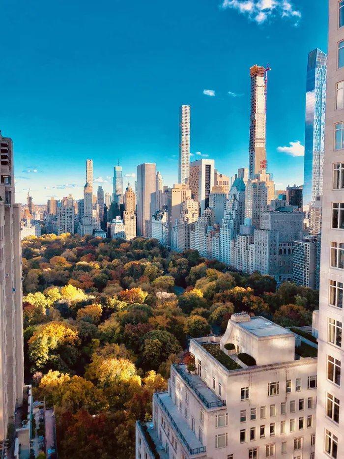 Obrázek NYpodzim