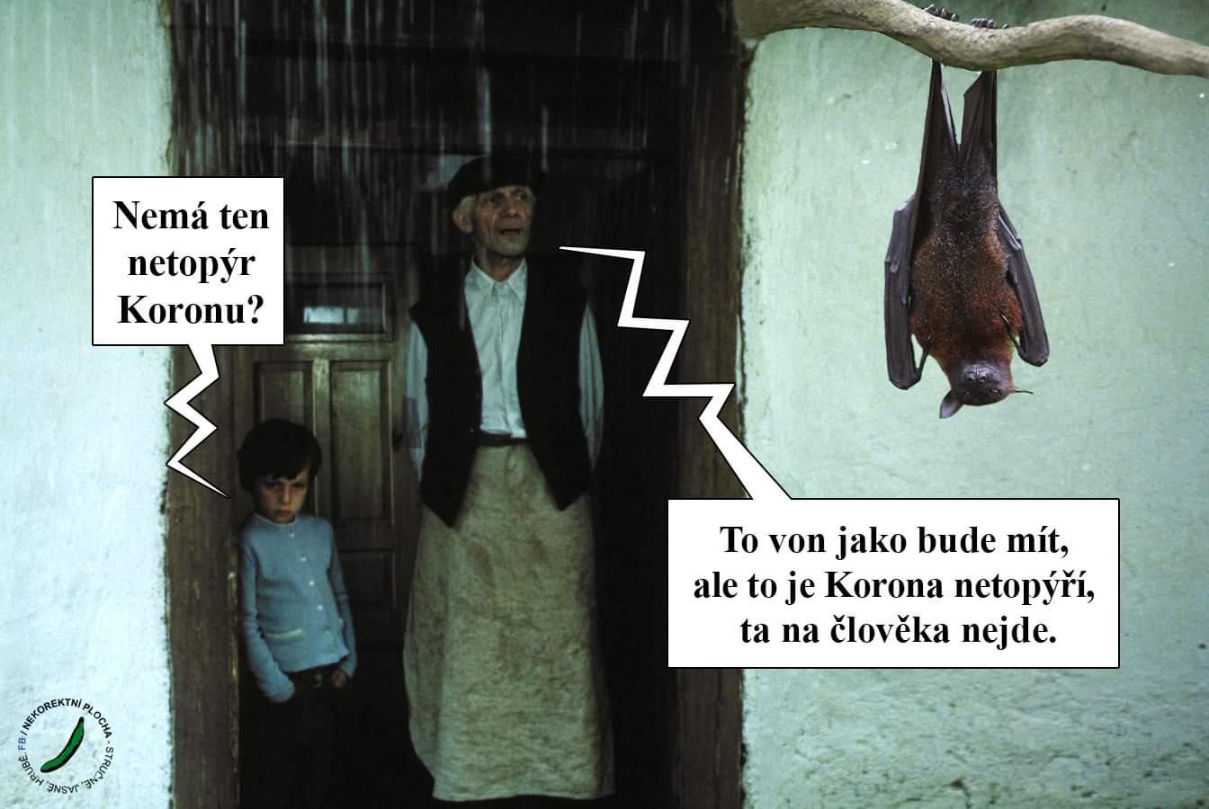 Obrázek Netopyrikorona