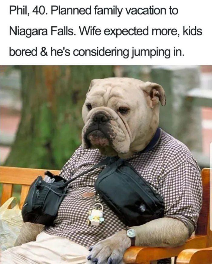 Obrázek Niagarawithfamilly