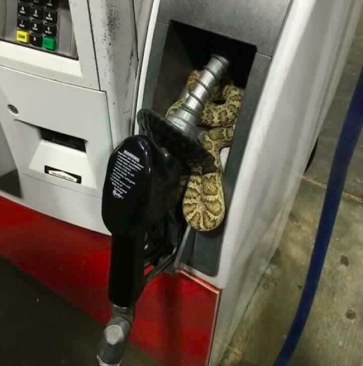 Obrázek Okay-IthinkIcanmakeittothenextgasstation