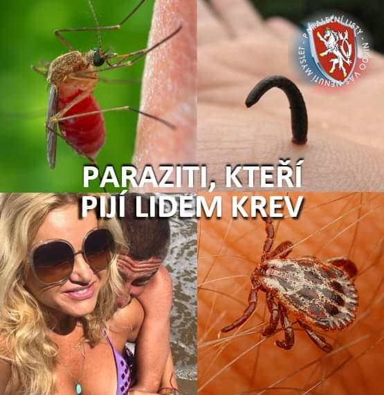 Obrázek Parazitisajicikrev