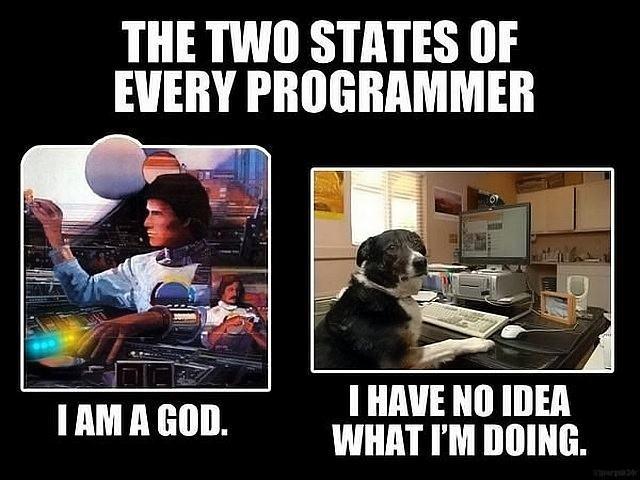 Obrázek Programmer557