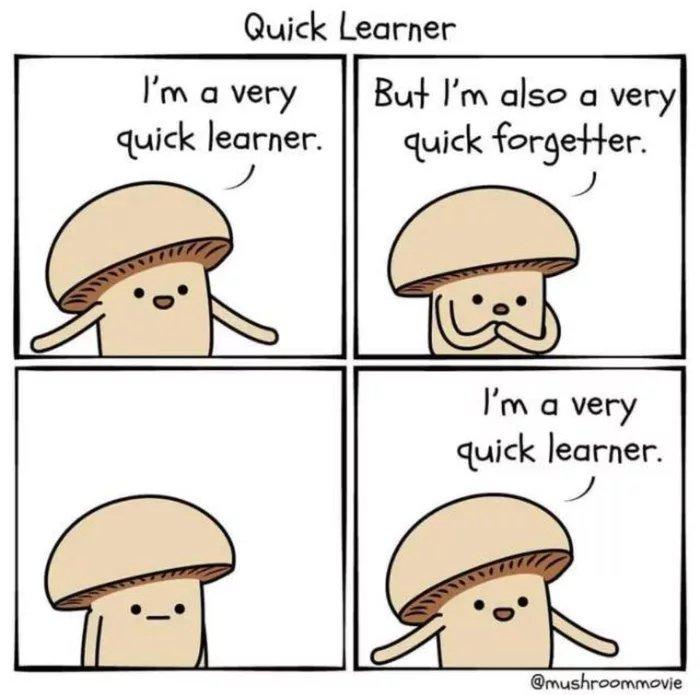 Obrázek Quick-learner