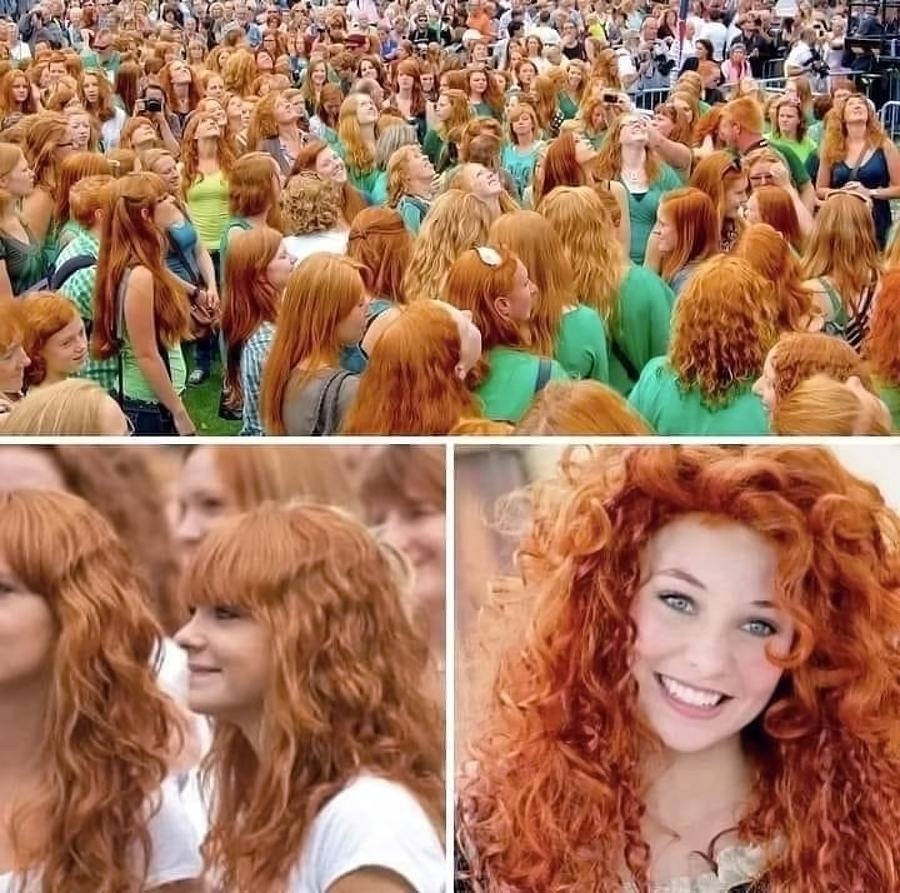 Obrázek RedheadfestivaI