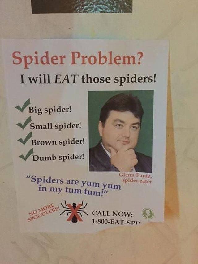 Obrázek SPiderProblem