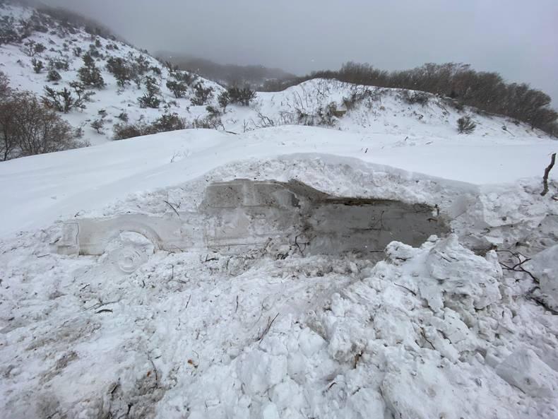 Obrázek Snowfossil
