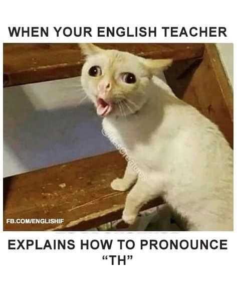Obrázek TeacherL