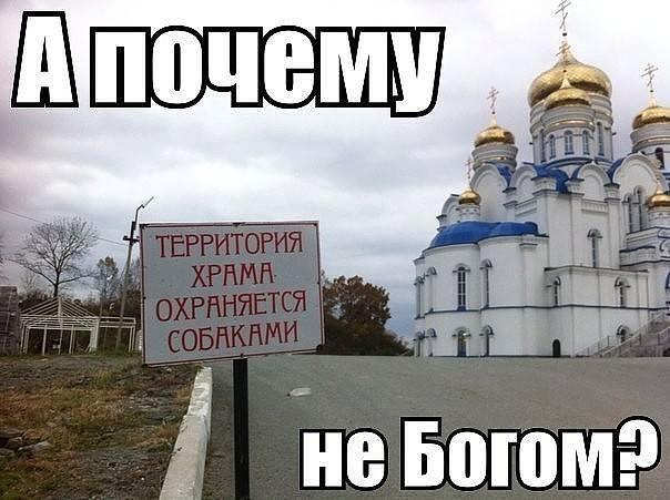 Obrázek Todavasmysl