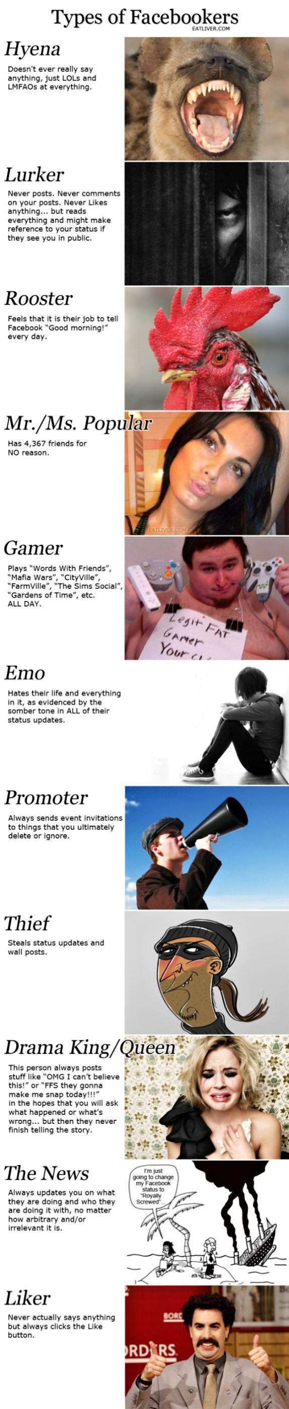 Obrázek TypesofFacebookers-30-04-2012