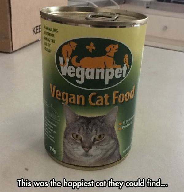 Obrázek VeganCatFood