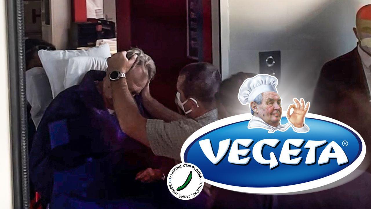 Obrázek Vegeta-doporucujesevkucharzVysociny