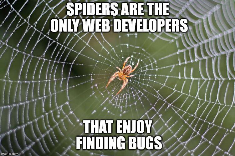 Obrázek Webdevelperwithbugs