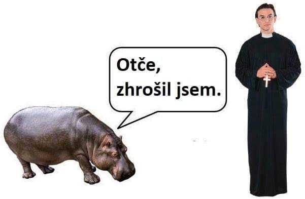 Obrázek Zhorsil