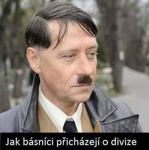 Obrázek basnici