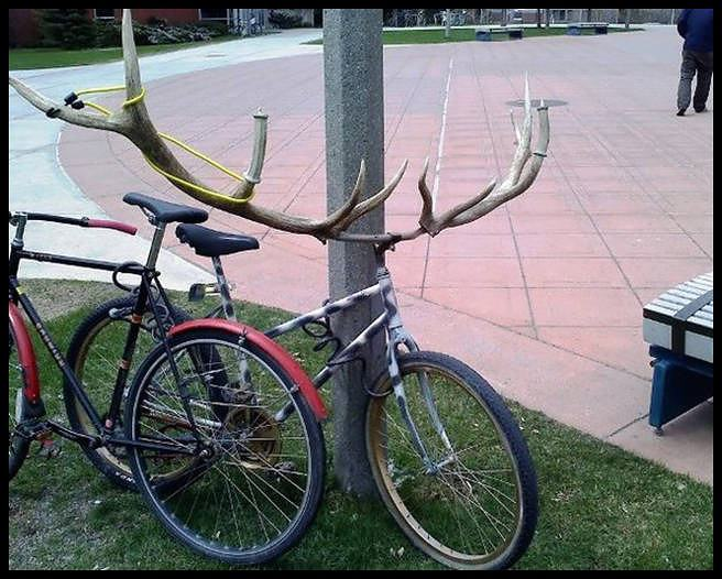 Obrázek bikeidea
