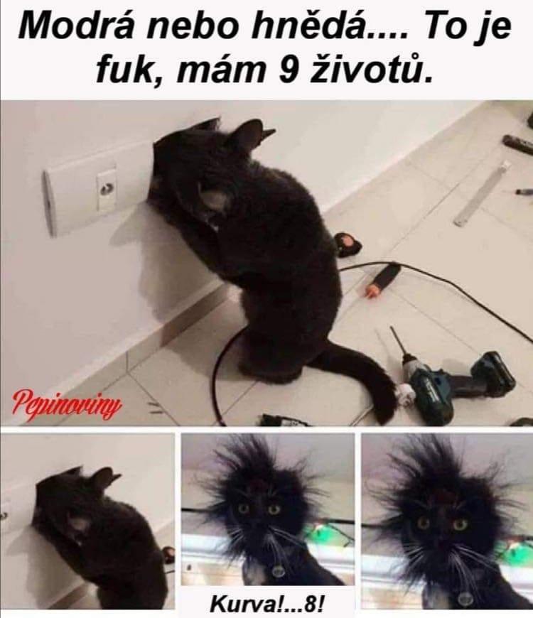 Obrázek elektrikarka