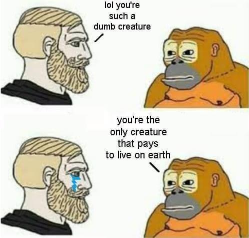 Obrázek evoluceprej