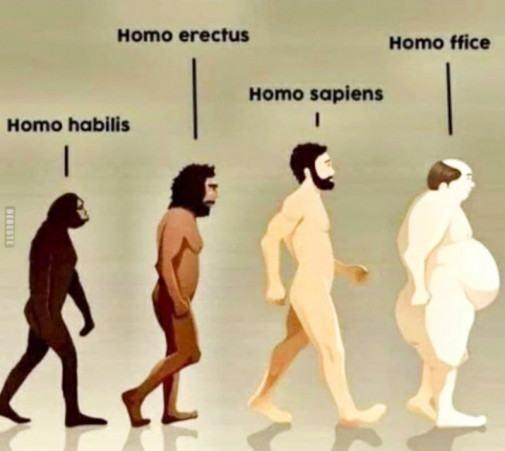 Obrázek evolucedokoncena