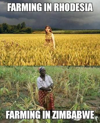 Obrázek farmininrhodesiazimbabwe