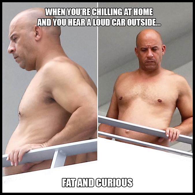 Obrázek fat-and-curious
