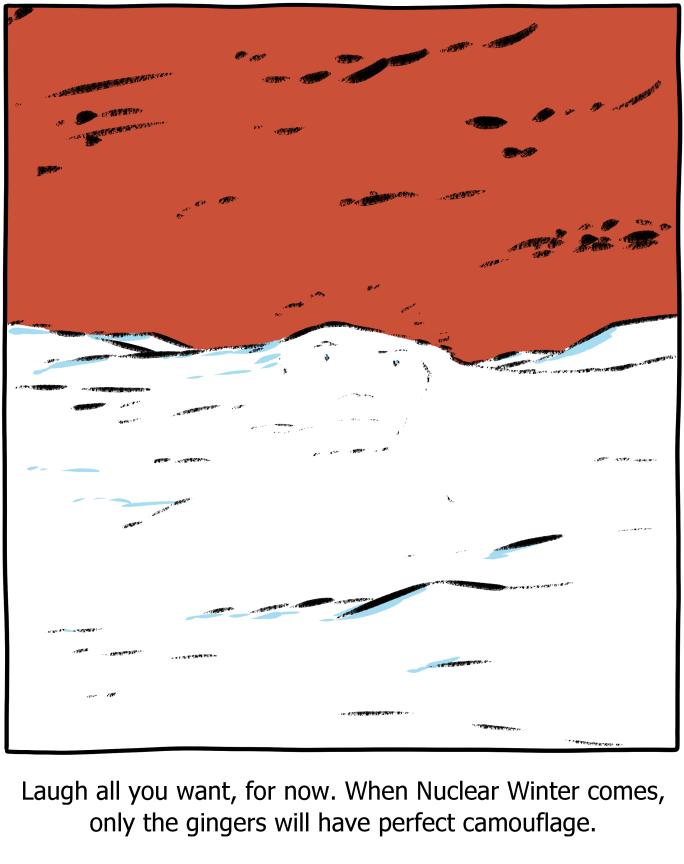 Obrázek gingercamouflage