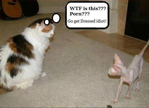 Obrázek go-get-dressed