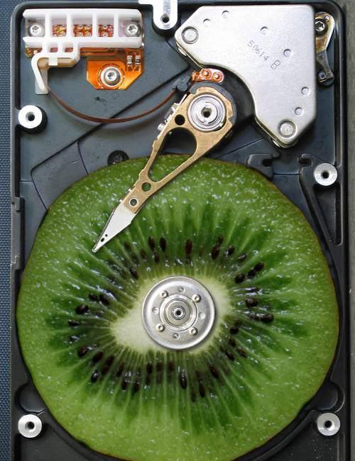 Obrázek greenkiwi