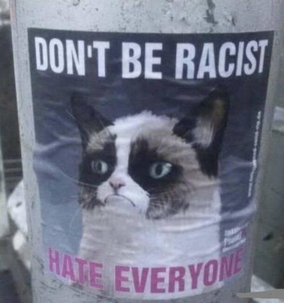 Obrázek hateeveryone