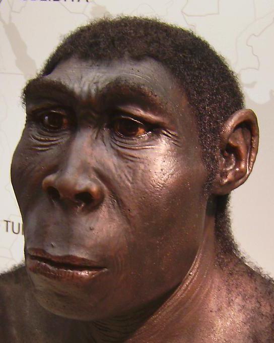 Obrázek homoerectusnezabudajktosi
