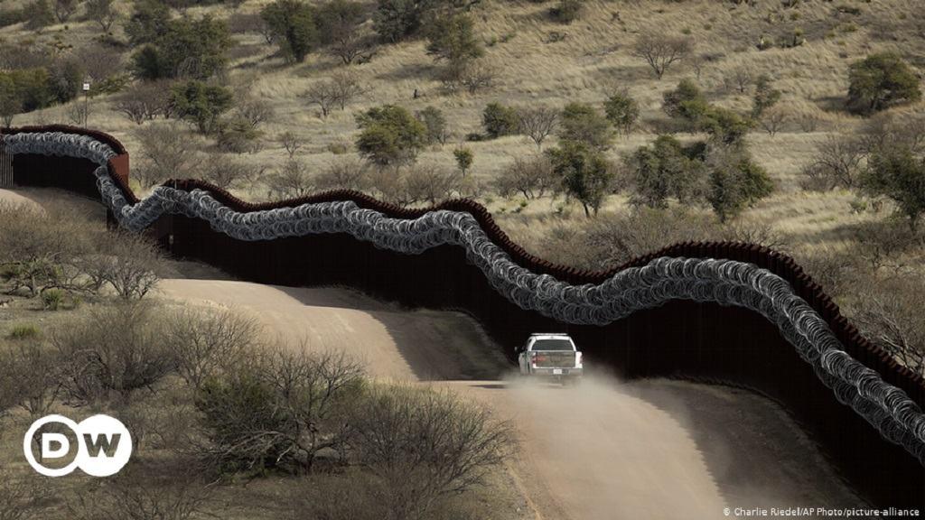 Obrázek husenkovadraha