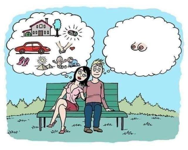 Obrázek lifeexpectations