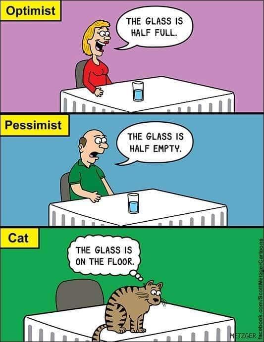 Obrázek logikakazdekocky-sklenice-je-plna-prazdna