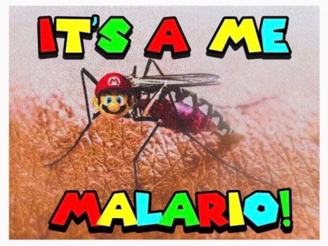 Obrázek malario