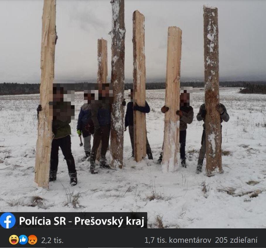 Obrázek policiachytilaspoluobcanovprikradezidreva