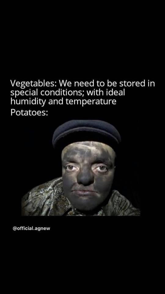 Obrázek potatoes1