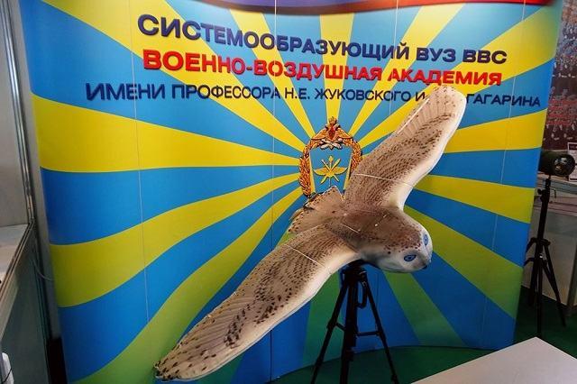 Obrázek ruskapruzkumnasova-jeivprovedeniorel