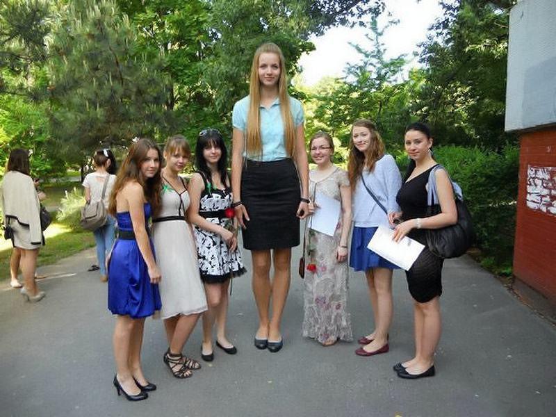 Obrázek russiangiant