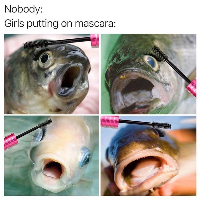 Obrázek rybiskamilasik