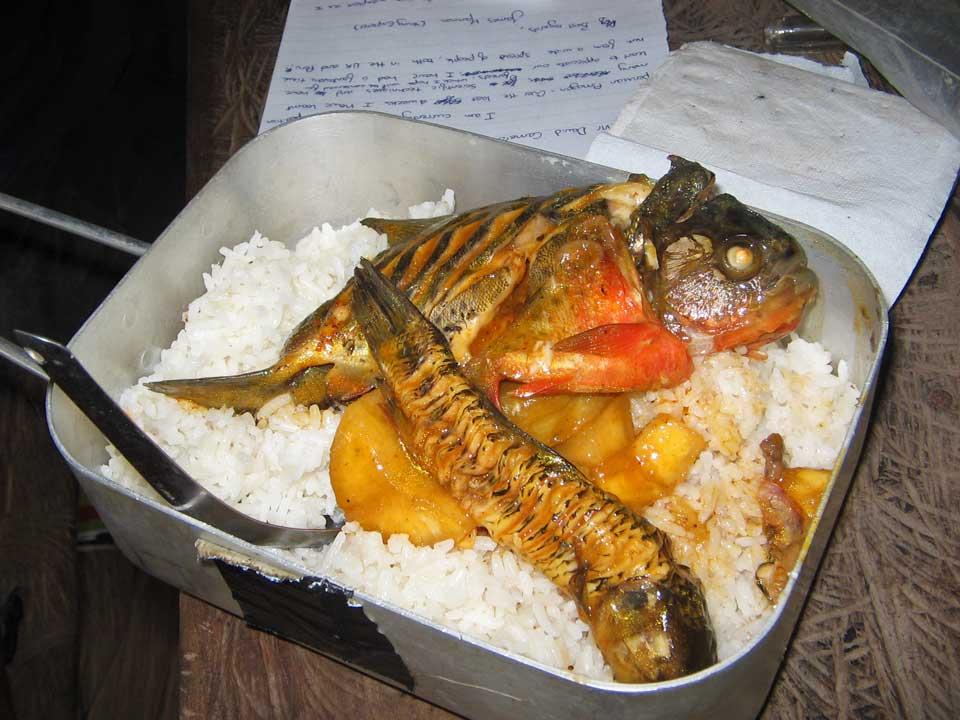 Obrázek rybusrizu