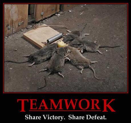Obrázek teamwork