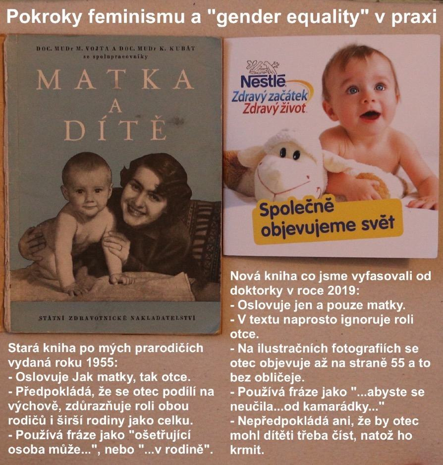 Obrázek ztohofeminismumamuplnerovnepohlavi