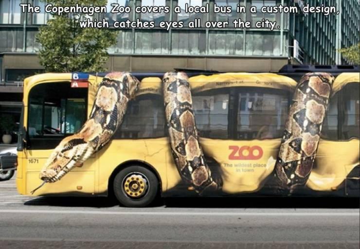 Obrázek zoomobile