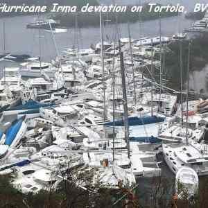 Obrázek '-Irma-'