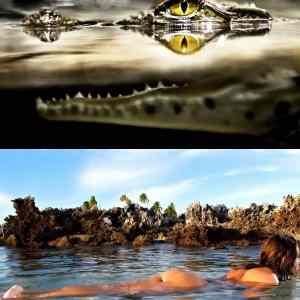 Obrázek '-Predators-20.07.2012'