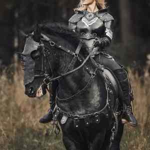 Obrázek '-Stallion-'