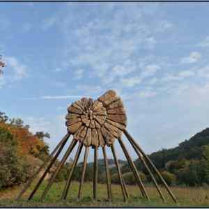 Obrázek '-Ammonite-'