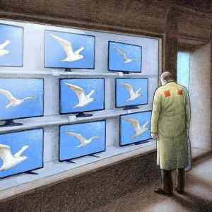 Obrázek '-Kuczynski-Kridla-'